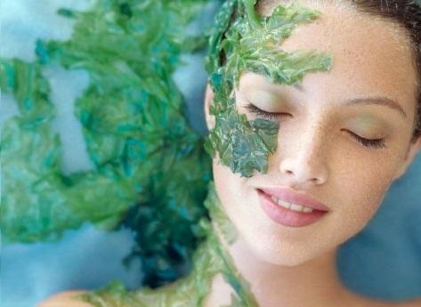 Đắp mặt bằng tảo biển giúp đẹp da, dưỡng trắng