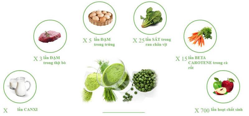 Thành phần dinh dưỡng tảo Spirulina Spimate Plus
