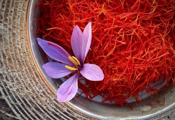 Nhụy hoa nghệ tây nổi tiếng là vô cùng đắt đỏ