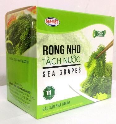 Rong nho biển tách nước Sea Grapes được nhiều người yêu thích